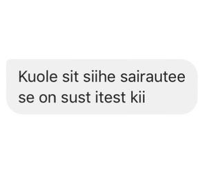 finnish, suomi, and suomeksi image