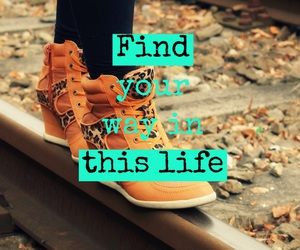 find, life, and never give up image