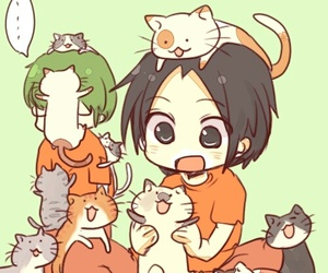 kuroko no basket, cat, and takao image