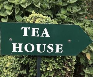 green and tea house image