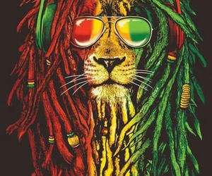 lion, reggae, and wallpaper image