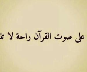 dz algérie algeria, خواطر كلمات رمزيات, and islam arabic arabe image