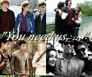 harry potter, hunger games, and teen wolf image