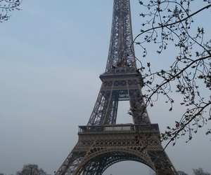 amour, city, and eiffel tower image