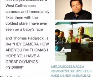 funny, misha, and tumblr post image