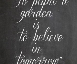 quotes, garden, and believe image