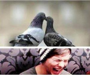 one direction, kevin, and louis tomlinson image