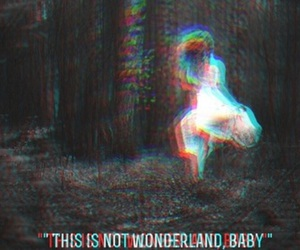 wonderland, alice, and drugs image
