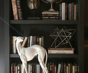 books, bookshelves, and greyhound image