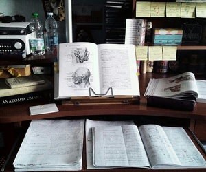 notes, book, and calendar image