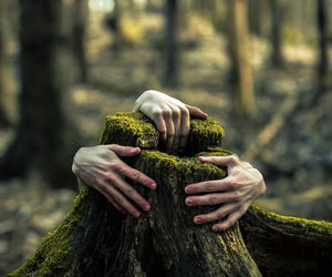 art, hands, and nature image