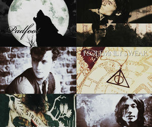 harry potter, prongs, and padfoot image