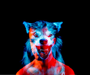 wolf and man image