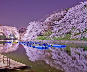 heaven, japan, and moonlight image