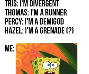 funny, divergent, and harry potter image
