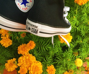 black, converse, and quality image