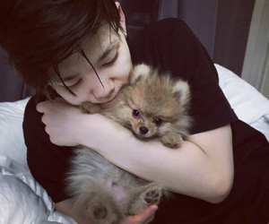 lovely, puppy, and choi junhong image