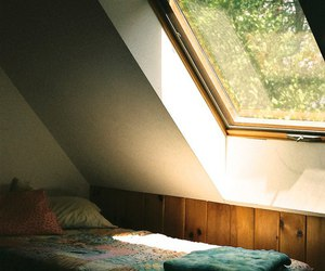 bed, light, and window image