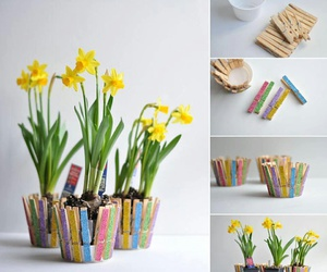 flower pot, project, and colorful image