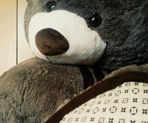 brown, stuffed animal, and toy image