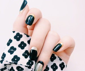 nail art, french manicure, and nail polish image