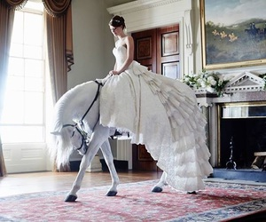 horse, beautiful, and white image