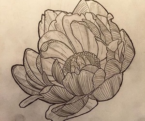 drawing, flower, and flower tattoo image