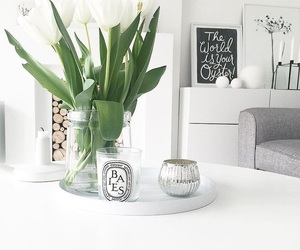 candle, plants, and white image