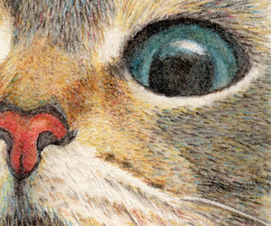 cat, etsy, and cat drawing image