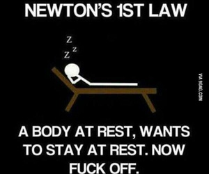 funny, newton, and amazing image