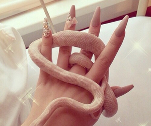 nails, snake, and animal image