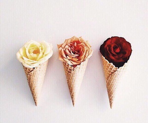 flowers, rose, and ice cream image