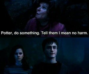 harry potter and professor image