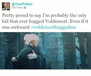 voldemort, harry potter, and tom felton image