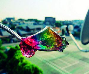 jelly, rainbow, and colorful image