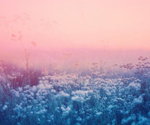 blue, dreams, and pink image