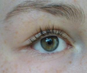 eyelashes, eyes, and freckles image