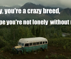 breed, hipster, and lonely image
