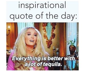 funny, quote, and tequila image