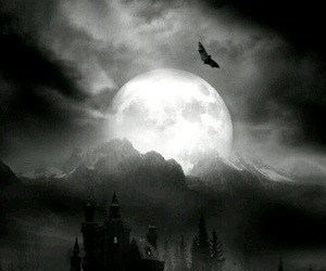 moon, dark, and castle image