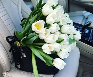 flowers, tulips, and car image