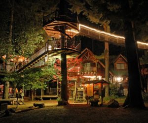 house, light, and treehouse image