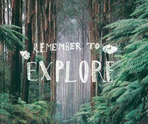 explore, quotes, and forest image