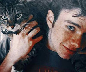 actor, brian, and cat image
