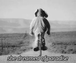paradise, coldplay, and Dream image