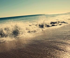 2016, Sunny, and beach image