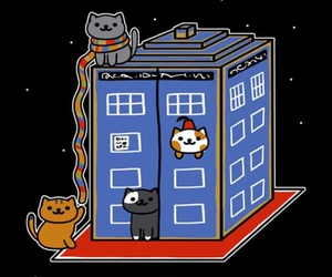 adventure, cats, and doctor who image