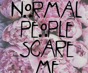 normal people scare me, ahs, and american horror story image