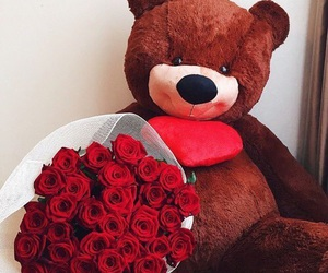 roses, bear, and flowers image