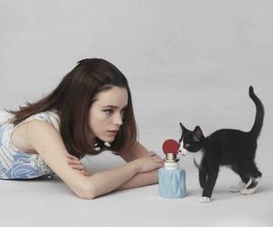 cat, girl, and miu miu image